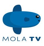 Mola TV Minta Maaf soal Siaran Euro 2020 yang Buat Pelanggan Kecewa