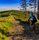5 Langkah untuk Memulai Bersepeda Gunung