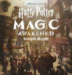 NetEase Games dan Warner Bros Konfirmasi Hadirnya Gim Harry Potter Mobile
