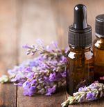 Manfaat Aroma Terapi untuk Gamer