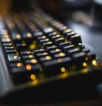 Apa itu Hot-Swappable Switch, Fitur ''Wajib'' Untuk Modifikasi Keyboard Gaming Mekanikal