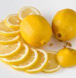Mengenal Lebih Jauh Lemon plus Manfaat Buah Ini Bagi Kesehatan
