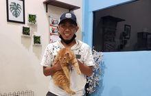 Gara Gara Upin Ipin Gelandang Persebaya Ini Pelihara Kucing