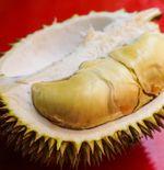 5 Manfaat Buah Durian untuk Kesehatan
