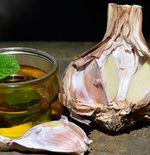 Minyak Bawang Putih untuk Perawatan Rambut dan Kulit, Mudah Membuatnya